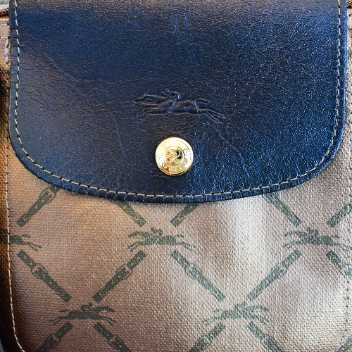 DesignerShare Longchamp Gold Le Pliage Tote - Detail