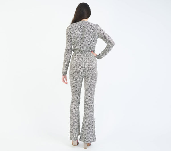 Stone Cold Fox Stardust Plunging V Neck Jumpsuit Back