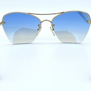 TomFordBlueTintedSunglasses_Back